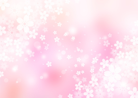 Sakura _ pink _ pale background
