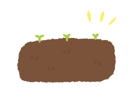 Leaves growing in the soil