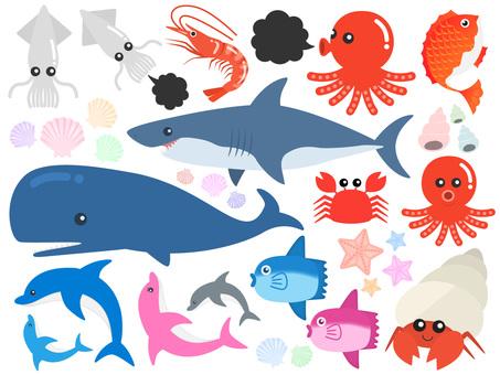 바다 생물 일러스트 세트