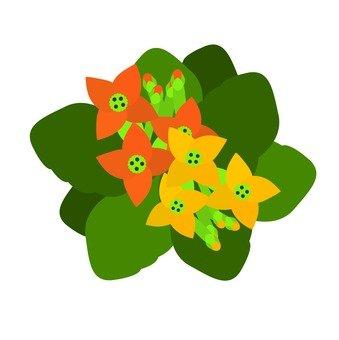Small flower bouquet