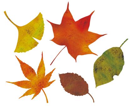 가을 잎 얼룩 색