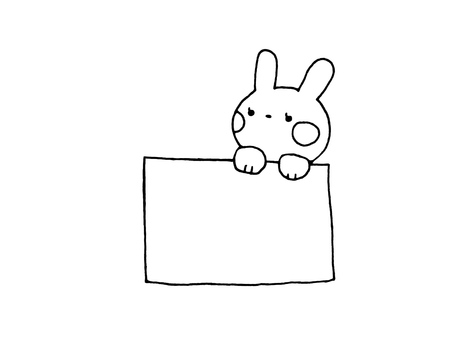 Rabbit and paper 1 on 1