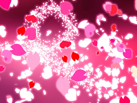 Sensual cherry blossoms snowstorm