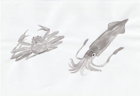 Crab and squid