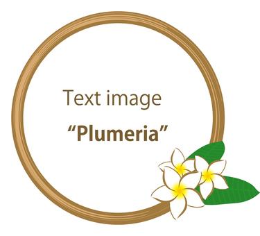 Plumeria Border 3