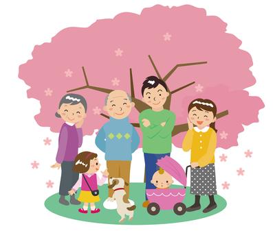 Parent-child's cherry-blossom view