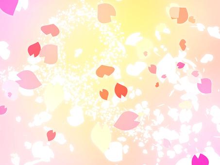 Sakura petals gently dancing Beautiful pretty material