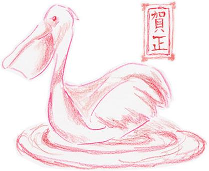 Pelican Hana