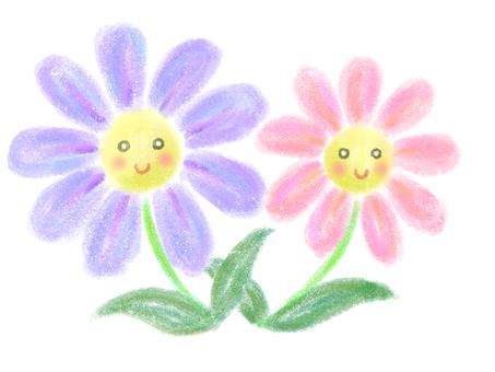 紫色和粉紅色的花朵(帶臉)