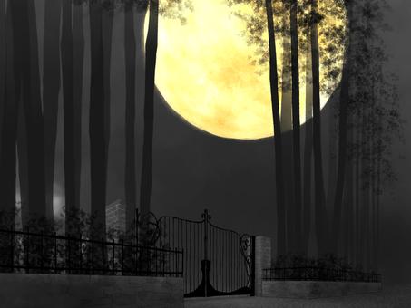 Background (Iron Fence, Moon)