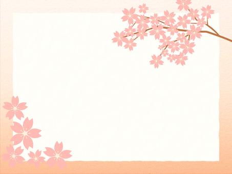 배경 벚꽃 6