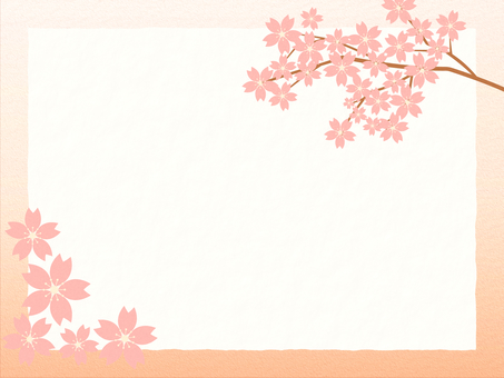 Cherry blossoms 6