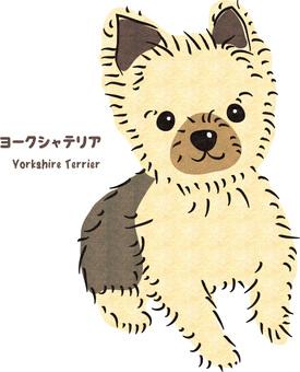Yorkshire Terrier retro rough texture