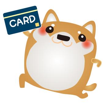 柴犬カード