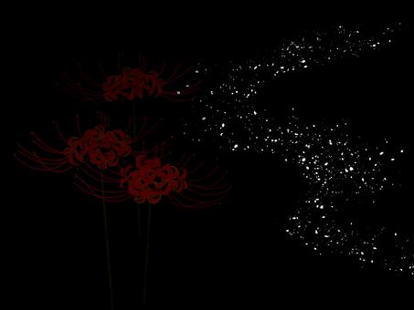 피안 꽃과 빛의 강