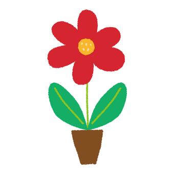 Flowerpot and red flower