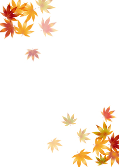 Autumn leaves 221