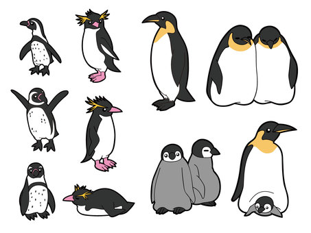 10 types of penguins