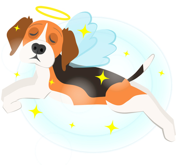Heaven dog