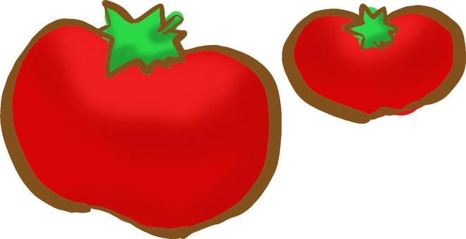 【Greengrocer 's Morning】 Crimson Fruit Tomato Tomato