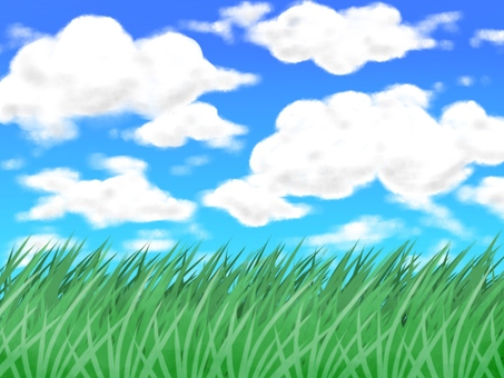 Meadow background with sky