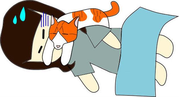 貓和主人之間的戰鬥