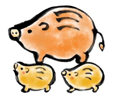 Pig parent 2