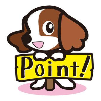 포인트 개
