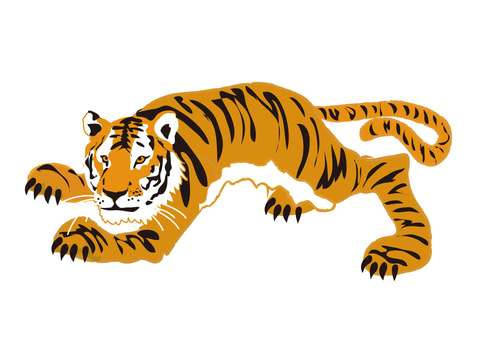 Animals _ Tiger 3