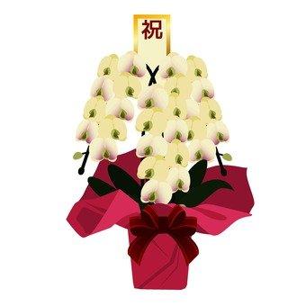 Flower gift 3