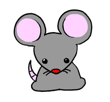Zodiac, rat