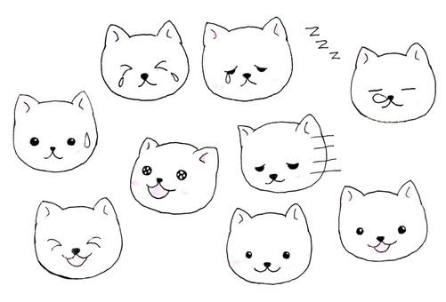 Cat △ various