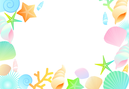 Seashell Background Summer