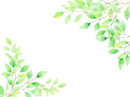 Fresh green ★ 0057-GR