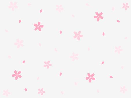 잠자리 배경 1 흰색 배경