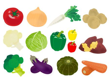 Vegetable material set