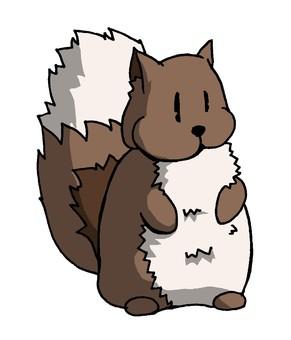 다람쥐 씨