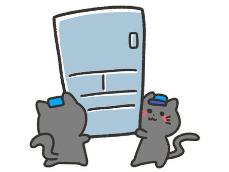 Black cat carrying a refrigerator