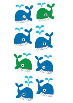 Whale kun