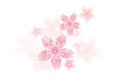 Blooming flowers 166