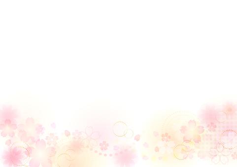 Cherry blossoms 331