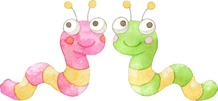 2 larvae