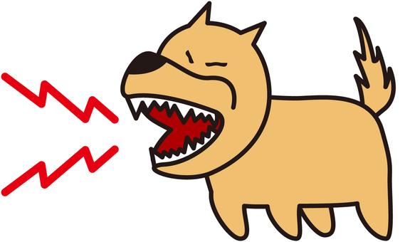 Angry barking dog