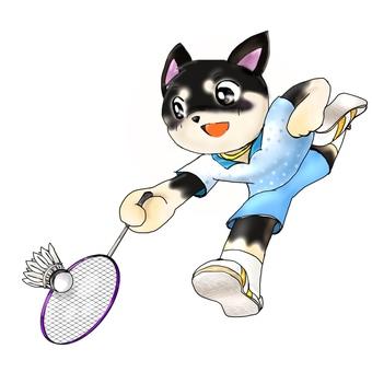 Black Chihuahua playing badminton