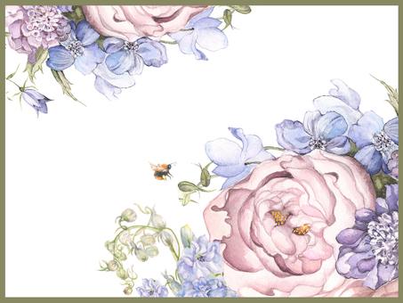 信背景15  - 與飛燕草的玫瑰