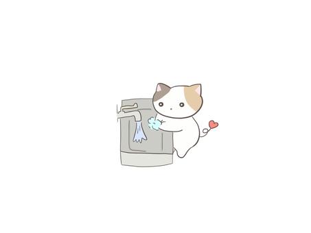Calico cat washing hands