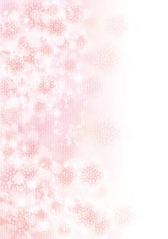 벚꽃의 꽃 139