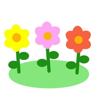 화려한 꽃 ②