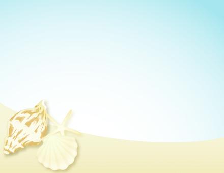Shellfish sand beach background