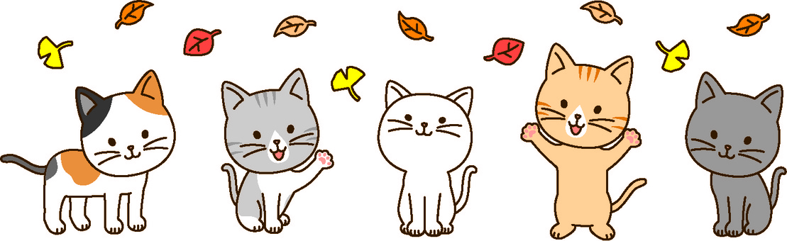 Autumn cats
